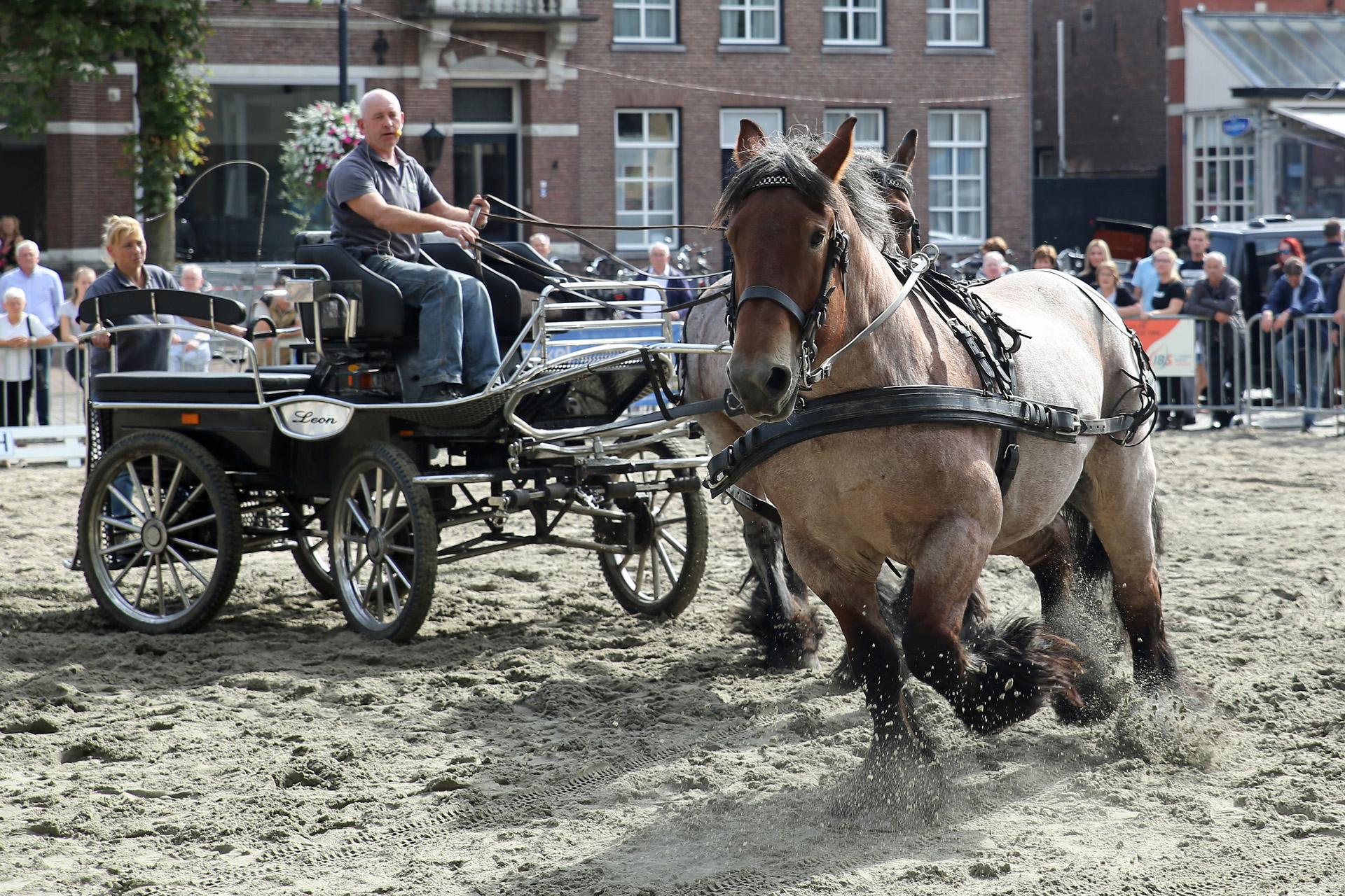 Guus Boot 1809.2 (vrij werk)
